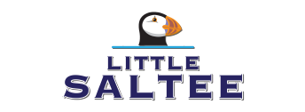 The Little Saltee