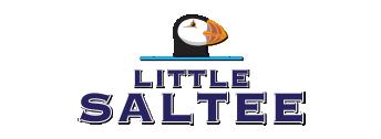 The Little Saltee
